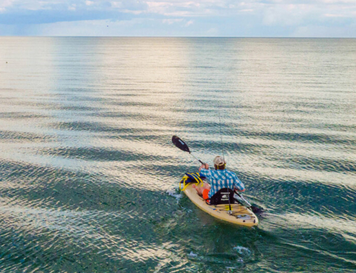 Kayaking on Sanibel & Captiva