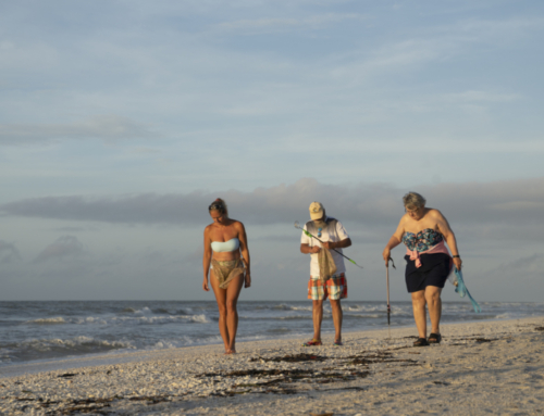 The Best Tools For Shelling on Sanibel Island