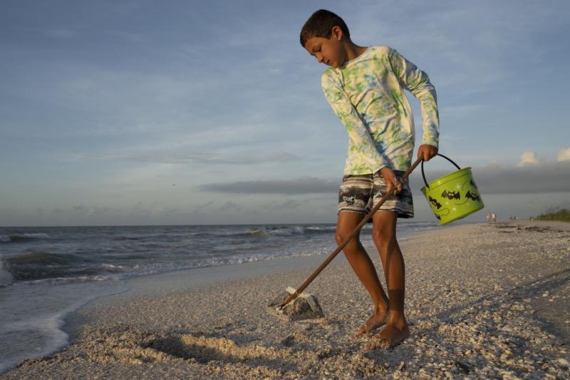 Boy shelling on Sanibel Beach 800x533